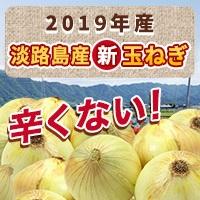 2019年新玉ねぎ